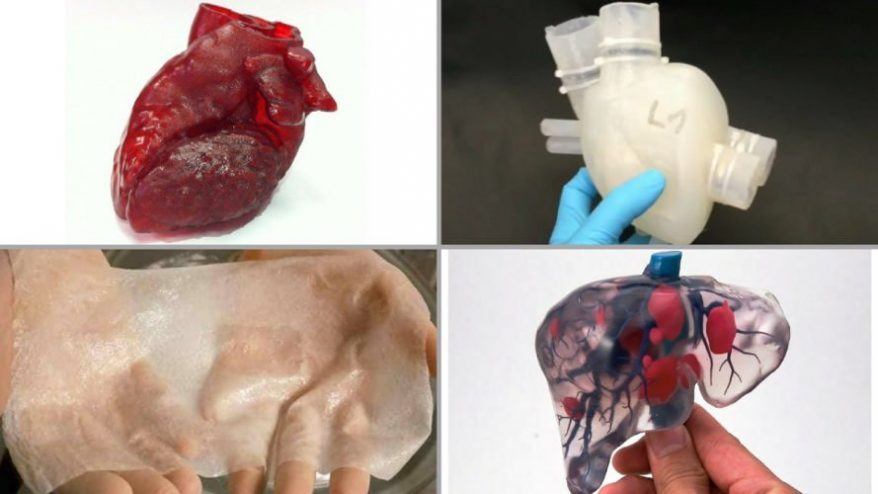 6 Exciting 3D Printed Organs & 3D Bioprinting Projects