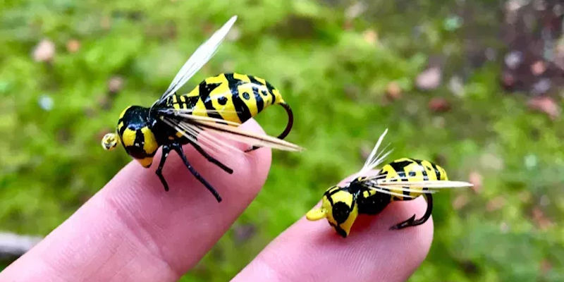 Wasp Lures 2